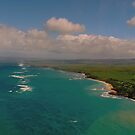 Hawaii from Above by Louise Fahy