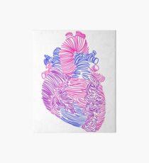 Bisexual Anatomical Heart Art Board