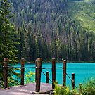 Emerald Lake ~ Nothing Can Hold Me Back by Lucinda Walter