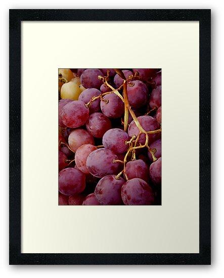 Grapes in Prague by Hallie Duesenberg