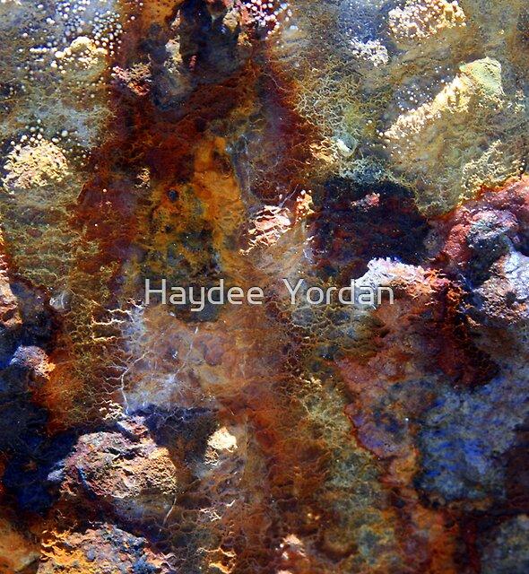 Beach rocks by Haydee  Yordan
