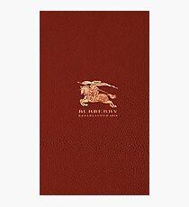 burbery brown Photographic Print