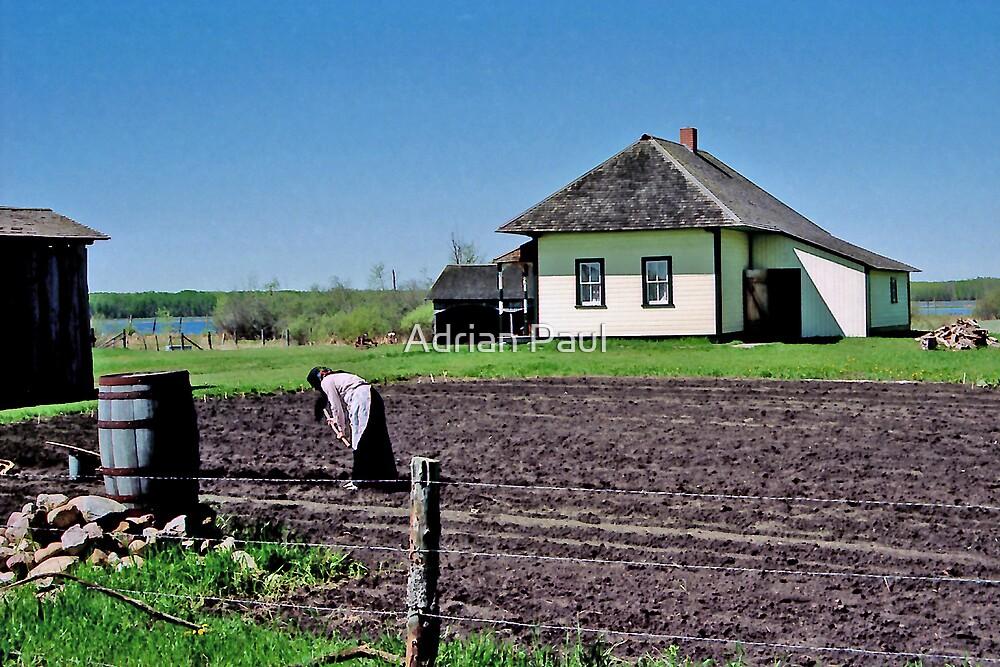 Yurko House & Farm, Alberta, Canada by Adrian Paul