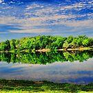 Still Lake by Rick  Friedle