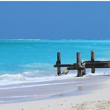 Tropical Beach by croper