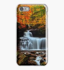 R B Rickets Falls iPhone Case/Skin