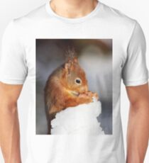 Red Squirrel with nut in snow Unisex T-Shirt