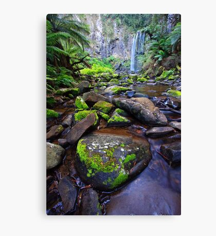 Deception Canvas Print
