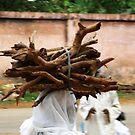North Cameroon by Rune Monstad