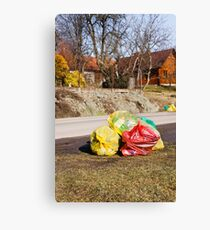 Earth day cleaning Canvas Print