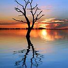 Tranquil Lake by Annette Blattman