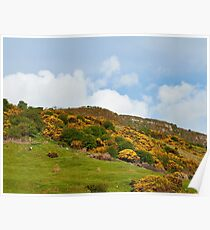 County Antrim Hills. Poster