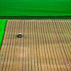 Tractor at work. by Victor Pugatschew