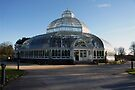 Palm House by CiaoBella