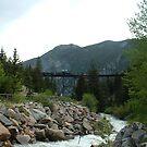 Georgetown Loop RR over Devils Gate in Colorado by janetmarston