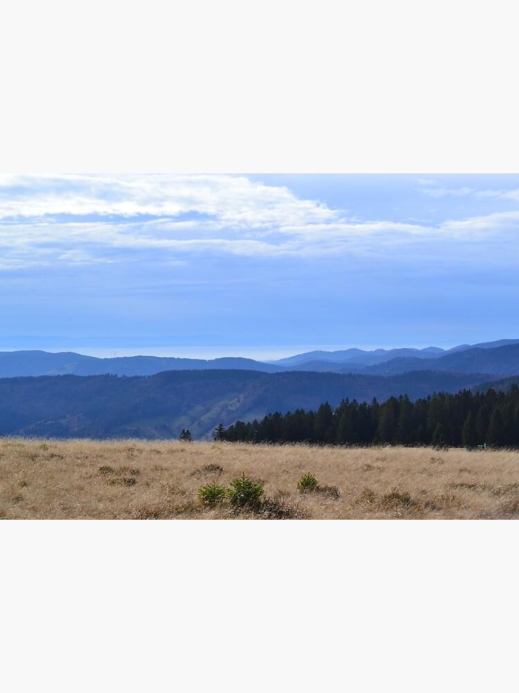 Schwarzer Wald von franceslewis