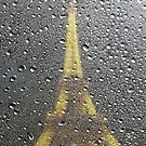 Paris, Rainy Day City by TwoSmallPtatoes