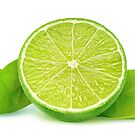 Lime with leaves by 6hands
