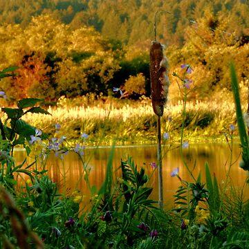 1377 - The Marsh by MyInnereyeMike