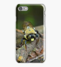 """Would you """"bee"""" my friend? iPhone Case/Skin"""
