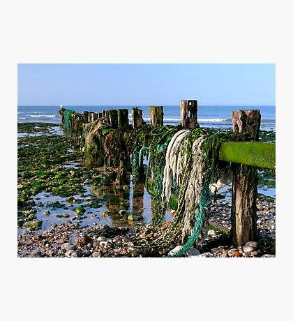 In search of the Trawlerman Photographic Print
