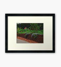 Visual Texture Garden Framed Print