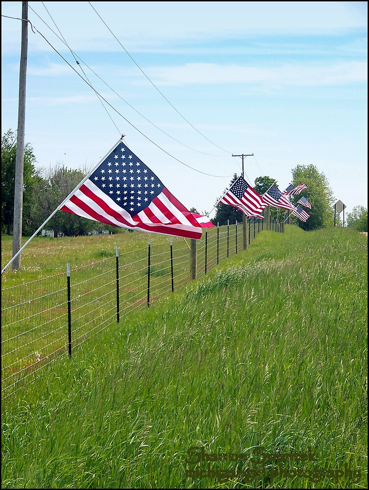 Memorial Day by MichiganGirl