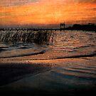 Gentle Waves by Jonicool