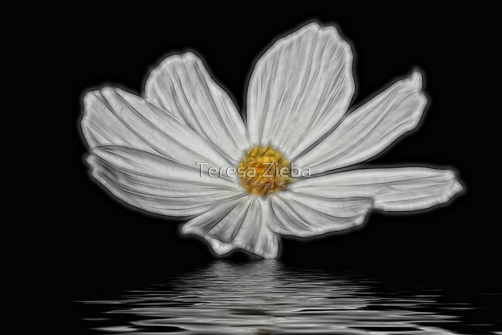 Flooded Blossom by Teresa Zieba