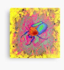 Protaetia cuprea ignicollis - Flower Beetle Metal Print