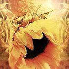 Sunflower Dream by SexyEyes69