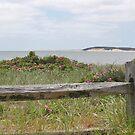 Beach scene by Linda Crockett