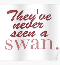 They've never seen a swan Poster
