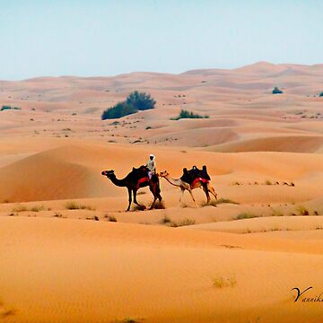 Camel Trek in the Desert by Photograph2u