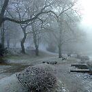Winter Fog on a Lake III by Daidalos