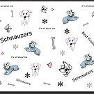 Schnauzer minature Dog by Forestwood