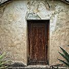 Mission Door by Colleen Drew