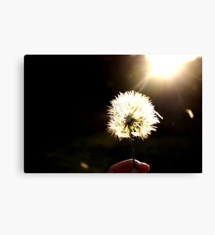 Wishes at my fingertips Canvas Print
