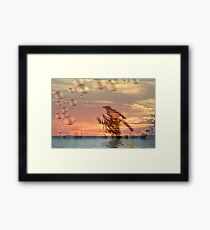 Mockingbird at Sunset Framed Print