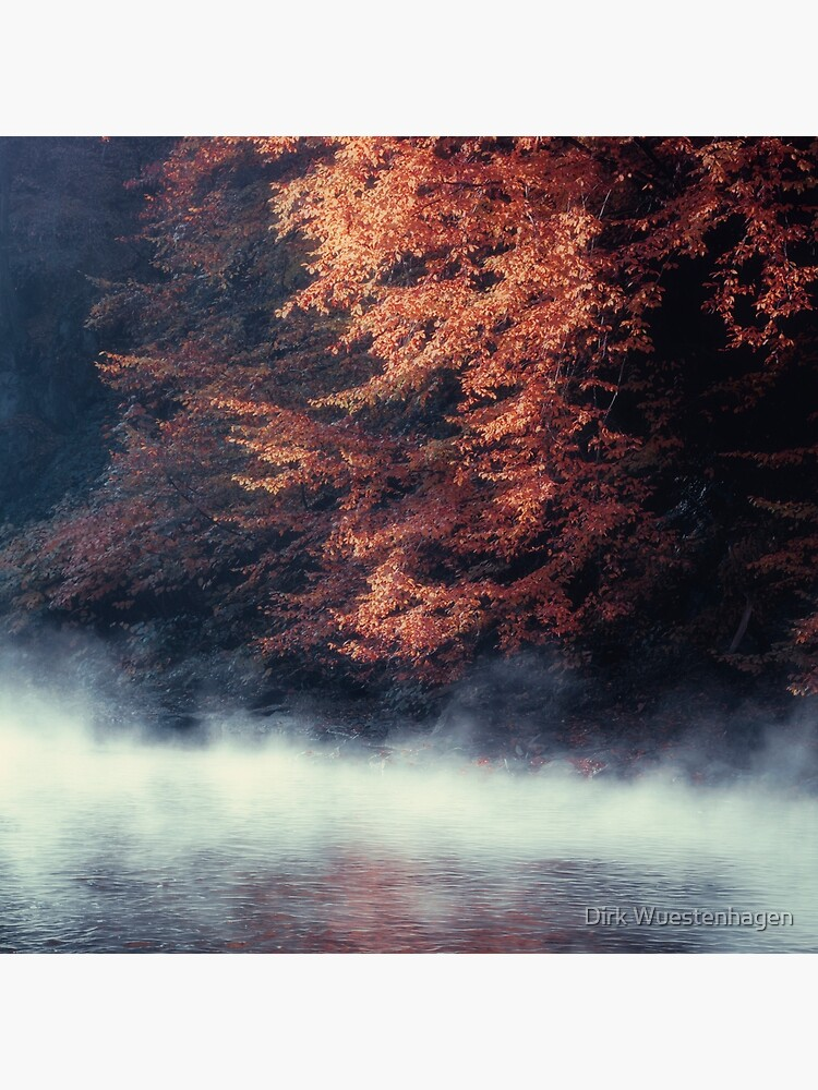 Nature*s Mirror - Fall at the River by DyrkWyst