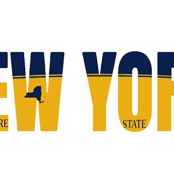 New York License Plate by VsTheInternet