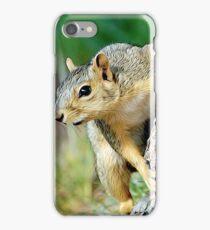 Squirrel Friend iPhone Case/Skin