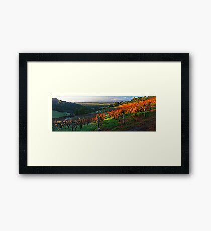 Windy Ridge Winery Framed Print