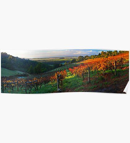 Windy Ridge Winery Poster