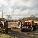 Old Rusty Tractors by Morgana Horn
