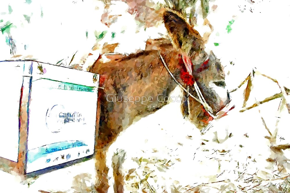 Donkey for the recycling of garbage by Giuseppe Cocco