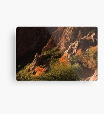 Rock Canyon Metal Print