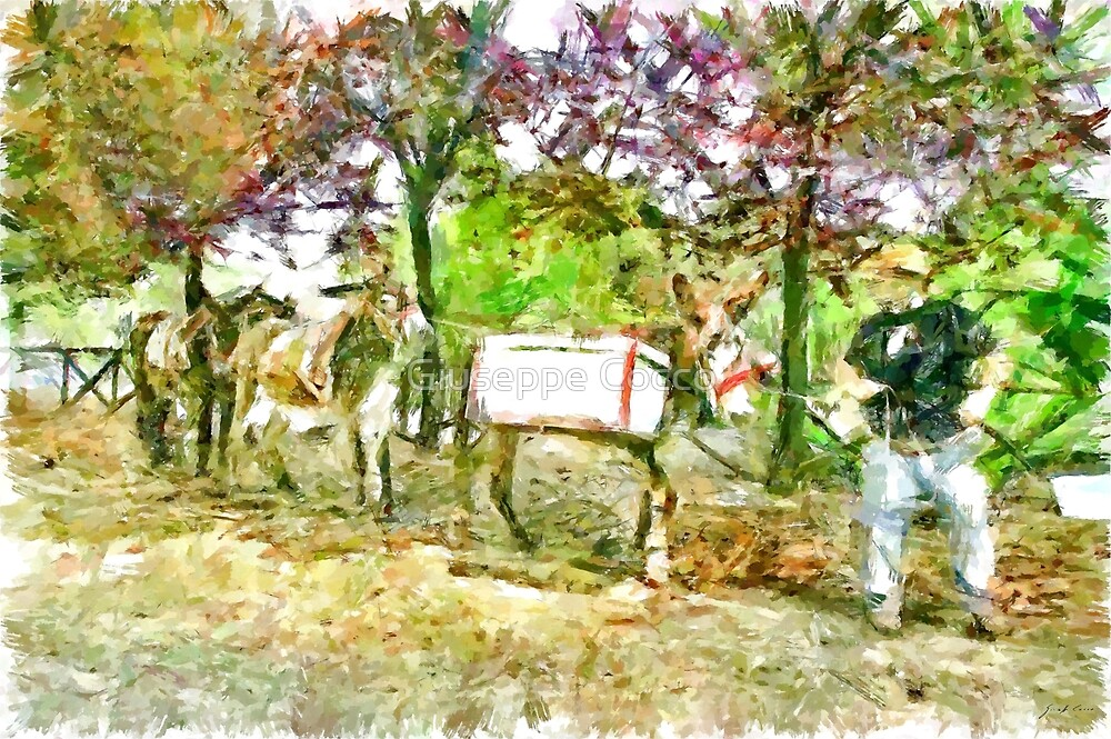 Man with donkeys for the recycling of garbage by Giuseppe Cocco