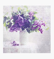 Faded Lilacs Photographic Print