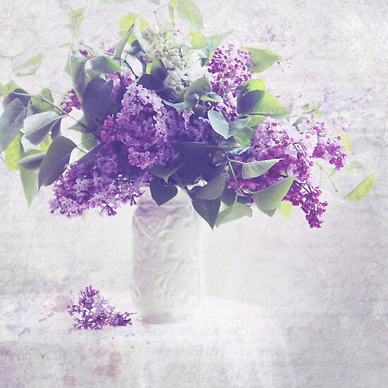 Faded Lilacs by SylviaCook